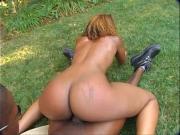 Негры ебуться на траве